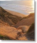 Point La Jolla Metal Print