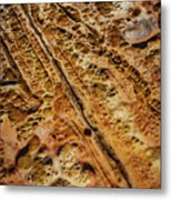 Point Lobos Abstract 106 Metal Print