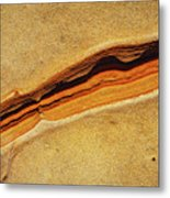 Point Lobos Abstract 111 Metal Print