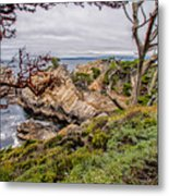 Point Lobos State Reserve Metal Print