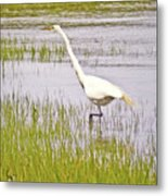 Point Pinole Regional Shoreline 4 Cropped Metal Print