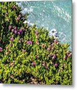 Point Reyes National Seashore Coast On Pacific Ocean Metal Print
