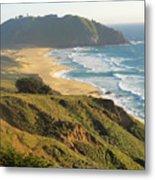 Point Sur National Park Metal Print