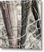 Points And Posts Metal Print