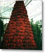 Pointsettia Tree Metal Print