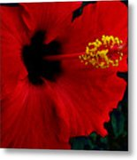 Poison Passion And Seduction Metal Print