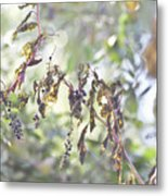 Pokeberry Light Metal Print