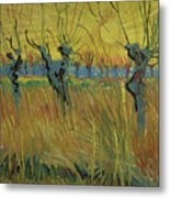 Pollarded Willows And Setting Sun Metal Print