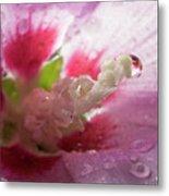Pollen Droplet Metal Print