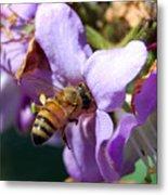 Pollinating 2 Metal Print