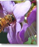 Pollinating 5 Metal Print