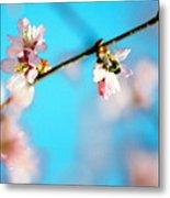 Pollination 1.03 Metal Print
