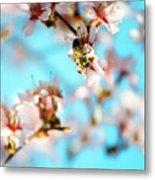Pollination 1.07 Metal Print