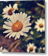 Pollination Love  Metal Print