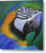 Polly Who Metal Print