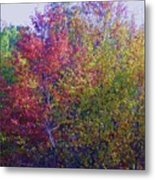Polychromatic Metal Print