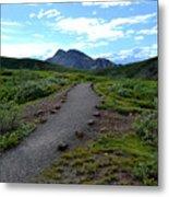 Polychrome Pass Trail, Denali Metal Print