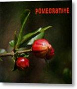 Pomegranite Art Metal Print