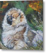 Pomeranian Puppy Autumn Leaves Metal Print