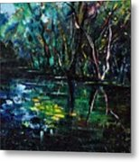 Pond 944 Metal Print