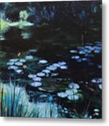 Pond At Port Meirion Metal Print