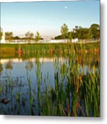 Pond At Sunset Metal Print
