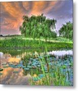 Pond Dreams 4 Metal Print