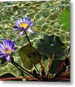 Pond Florals Metal Print