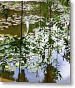 Pond In Marrakesh Metal Print