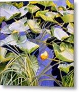 Pond Lilies Metal Print