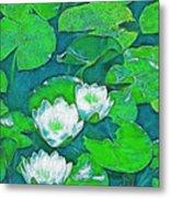 Pond Lily 2 Metal Print