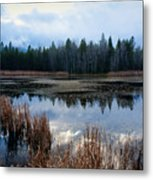 Pond On The Pend Orielle Metal Print
