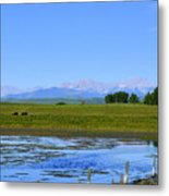 Pond Pasture And  Rocky Mountains Metal Print