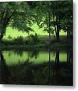 Pond Reflect Metal Print