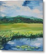 Pond Valley Metal Print
