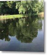 Pond With Ducks Metal Print