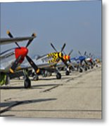 Ponies All In A Row Metal Print