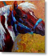 Pony Boy Metal Print