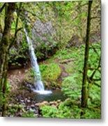 Ponytail Falls, Oregon Metal Print