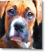 Pooch Metal Print by Robert Smith