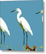Pop Egrets Metal Print