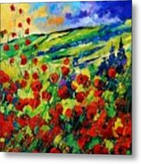 Poppies 78 Metal Print