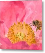 Poppies And Bumble Bee Metal Print