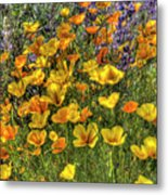 Poppies And Lupines Metal Print