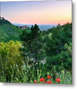 Poppies And The Alhambra Palace Metal Print
