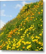 Poppies Hillside Meadow 17 Blue Sky White Clouds Giclee Art Prints Baslee Troutman Metal Print