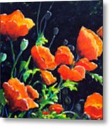Poppies In The Light Metal Print
