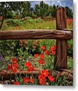Poppies In The Texas Hill Country Metal Print