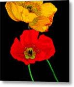 Poppies On Black Metal Print