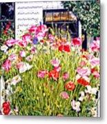 Poppies On Niagara Street Metal Print by David Lloyd Glover